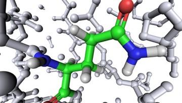Amino acid glutamine_01