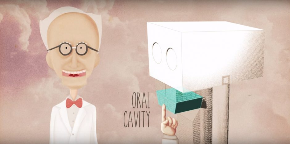 Oral cavity animation