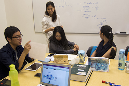 A problem-based learning session in the Vancouver Summer Program in Medicine. Photo credit: Brian Kladko
